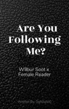 Are You Following Me?      Wilbur Soot x Female Reader by 0gh0ulio0