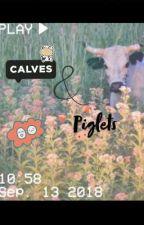 Calves & piglets | sope , hopega , yoonseok , subi  by Sunkittymwuah