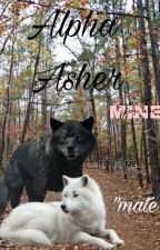 Alpha Asher (°COMPLETE°) by 38babyari