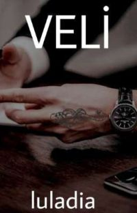 VELİ -GAY cover