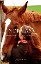 Norman by CrazyBarrelRacer
