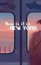 How is it in new york by xenryver