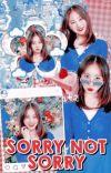 𝗦𝗢𝗥𝗥𝗬 𝗡𝗢𝗧 𝗦𝗢𝗥𝗥𝗬 ! oc girl group cover