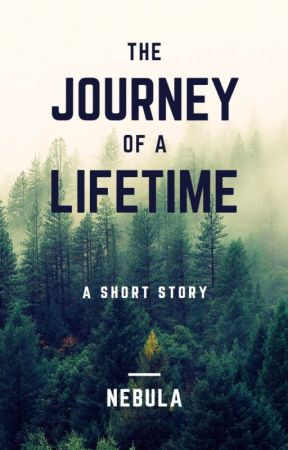 The Journey Of a Lifetime by beingmeandyou