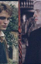 𝚃𝚘𝚛𝚗- Cedric x Reader x Draco by amoristdiggory