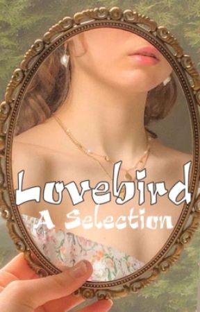 Lovebird ( a selection ) by -Auberon-