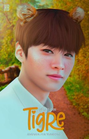 ━━ tigre ♡ : minsung ! by ysangoth-