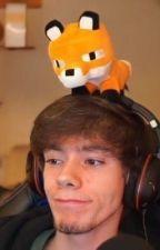 pretty foxy | fundy  by ambersasimp
