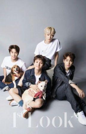 K-pop grup tanıtımı  by sunwoos_cherry