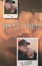 SPLIT OPEN (18+) by lixie420unsafe