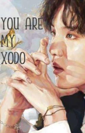 You Are My Xodó [YoonMin]  by TaeTaeAndNochu