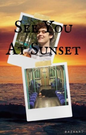 See You At Sunset (Wilbur Soot x Reader) by ChildBean