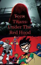 Teen Titans: Under The Red Hood [Teen Titans x Male Red Hood Reader] by ShallotStudioz