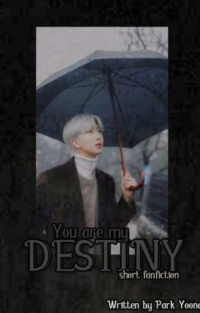 You are my DESTINY  by Parkyoona9943