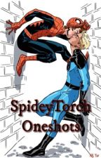 SpideyTorch Oneshot Collection by Laine813