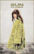 sunflower // hermione granger  by alwaysgrangerx