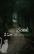 ספר אחד הרבה סודות by noastoriesxx