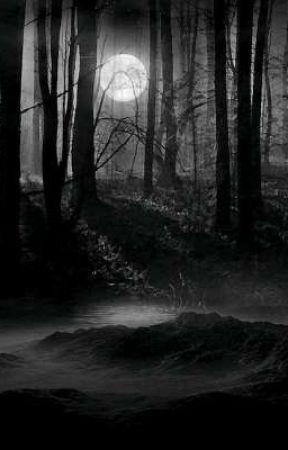 A saga almas sombrias : Herdeira ( livro dois ) by Alezinga