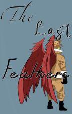 The last feathers HawksxDabi by LexfoxWrites