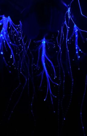 Cliché  by --everyday--
