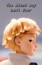 The blond boy next door {Adrien Agrest X Reader} by AritiNoir