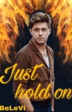 Just hold on /Niall Horan/ von BeLeVi