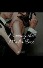Meeting the Mafia Boss by aCATsuki3
