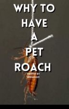 Why to have a pet roach by Emma45229