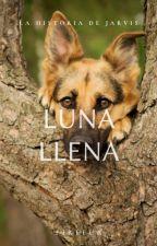 Luna Llena by -F-friends-
