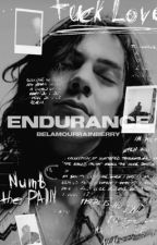 Endurance [h.s.] by belamourrainberry