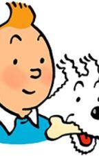 Tintin X Reader by PinkCropTop