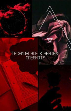 Technoblade x Reader Oneshots by ArcticAnarchist