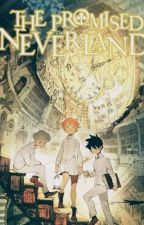 The meaning of life || Tpn X reader || by _daisymoon7_