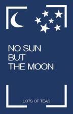 No sun but the moon door Lotsofteas