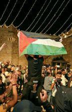 palestine the truth by _mxXxm_