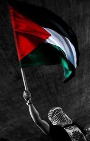#FREEPALESTINE by maxfa76