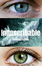Indescribable by LindseyPayton