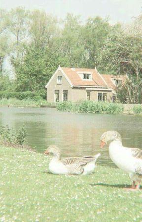 破开 ━ IN THE POOL | KOOKTAE  by eumlyeongie