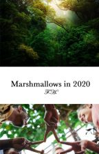 Marshmallow in 2020 by emotionalpoetry