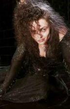 The wife (bellatrix x reader) by Littleone088