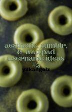 ↳ aesthetic, tumblr, & wattpad username ideas *book 5* **COMPLETED** [2021] by y2kangelz