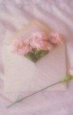 El Amigo de Noya - San!!