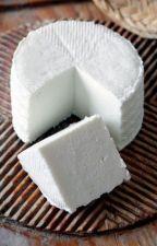 Paar Gründe warum Käse besser ist als Brot by IDunnoWhatMyNameyisO