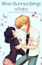 When Bunnyx Brings a baby : A Miraculous Ladybug Fanfic  by bibojoe