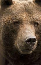 Animal Shifters: Bearly Human by Skiplight3122