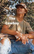 The CowBoy *BWWM* by DivestingDisney