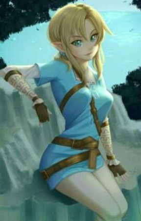 Link the heroine of Hyrule and of the wild with male OC by Dracula26000