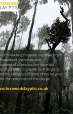 Clay pits development site in Pallinghrust   Loxwood Clay Pits by LoxwoodClayPits