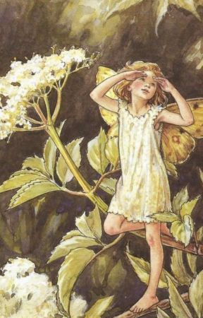 we smelled like cherry blossom. by rinophelia
