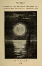 Rises the moon by abibelinha